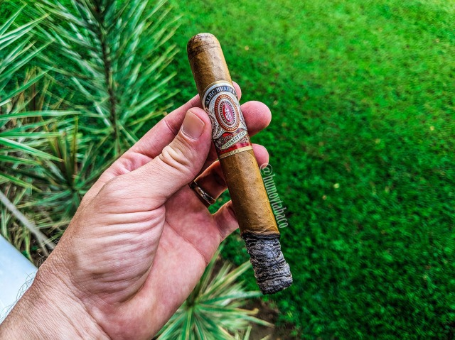 Alec Bradley - Connecticut 03