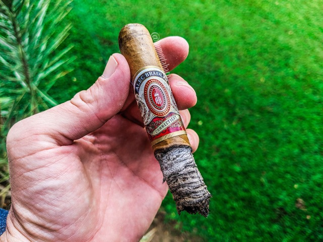 Alec Bradley - Connecticut 06