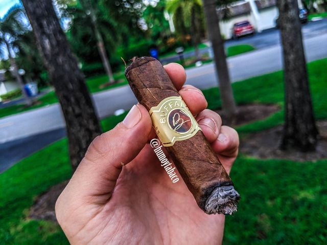 Buffalo - Box Press Habano 05